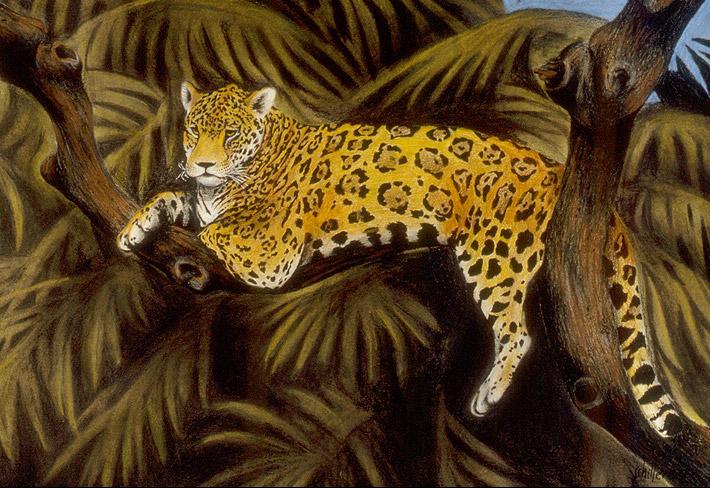 Jaguar_main