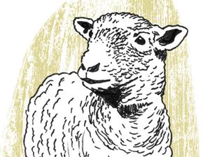 Heritage Livestock